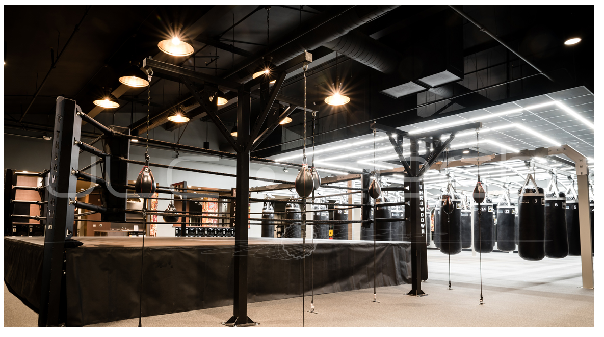 Undisputed Boxing Gym 2