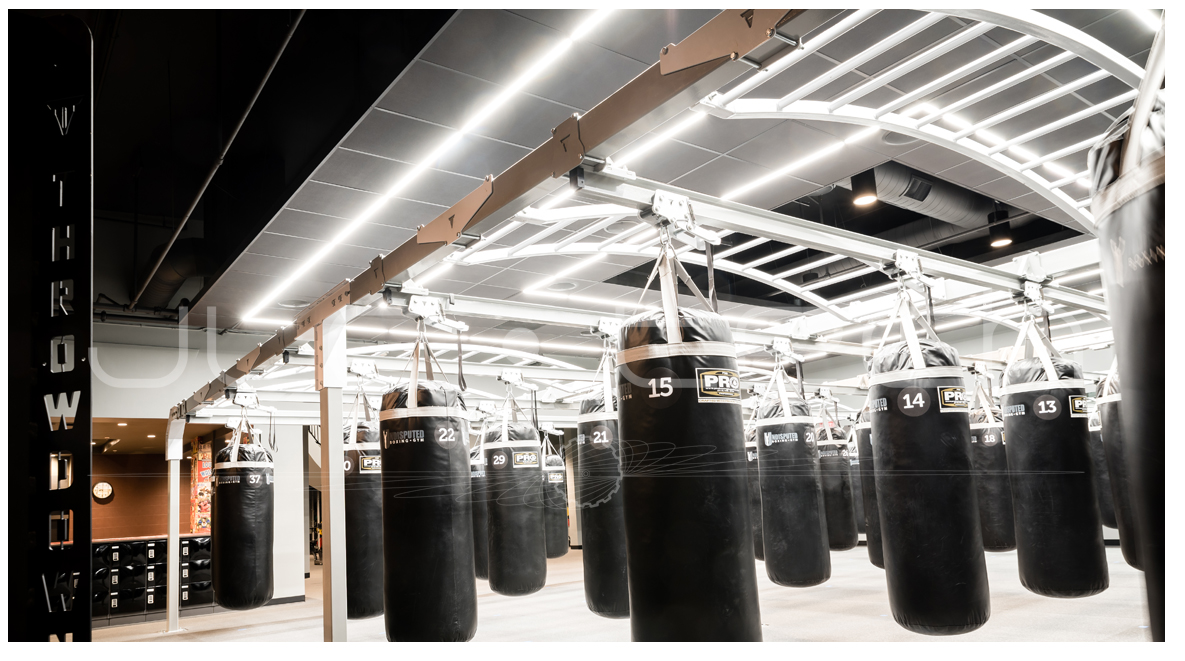 Undisputed Boxing Gym 3